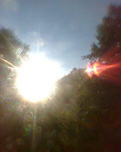 Foto ufo op de Elohim Krachtplaats